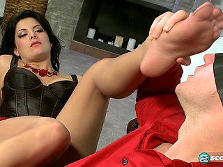 Penetrate My Pantyhose! - LegSex
