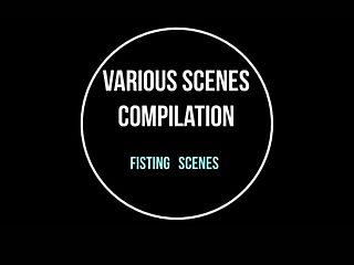 Various Scenes Compilation