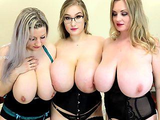 Busty ass trio