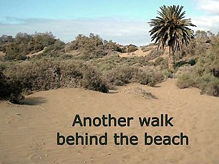 Another walk behind the beach