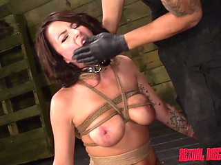 Glamorous diva Kali Kavalli stripped and fucked while tied up