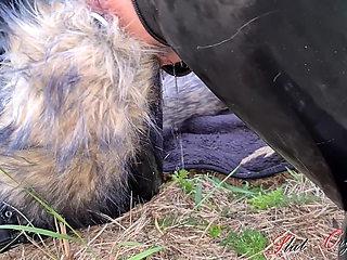 Dog slut orgasm, Celeste receives dog training outdoors